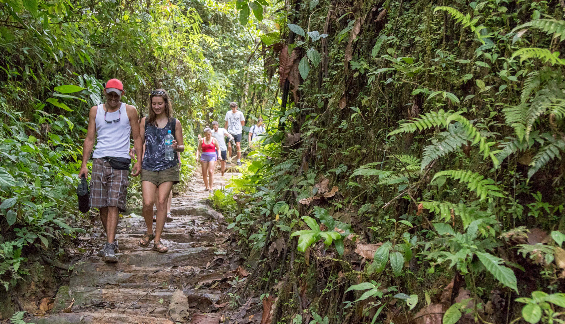 People walking in the middle of the jungle in Ecuador. Southamerica